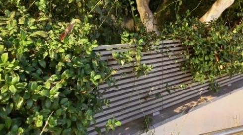 גדר לגינה מאלומיניום