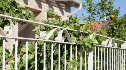 גדר סורגים לבנה מאלומיניום